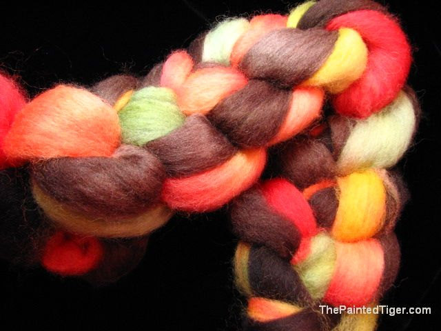 Bands of Autumn Shetland Wool Combed Top