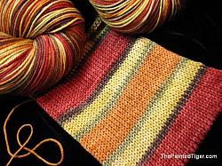 Autumn Splendor Stripe - Journey Sock Yarn