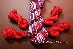 Red Journey Mini Skeins - Grand Old Flag Coordinate