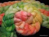Hibiscus Gradient - SW Merino Fiber - 4 oz