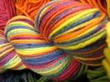 Ripened Rainbow - Siberian SW Worsted
