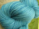 Blue Spruce - Bengal