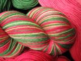 Poinsettia - Bengal BFL Sock