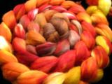 Slices of Fall - Polwarth Top