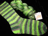 Sea Urchin Stripe on Safari Sock